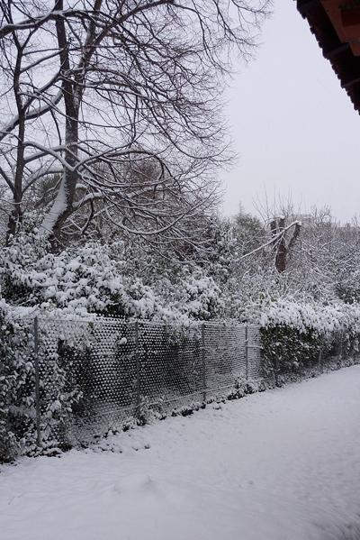 フランスの雪の日